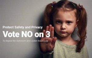 Image from No on 3 campaign showing little girl with her hand outstretched as if to say 'no.' https://twitter.com/keepMAsafe