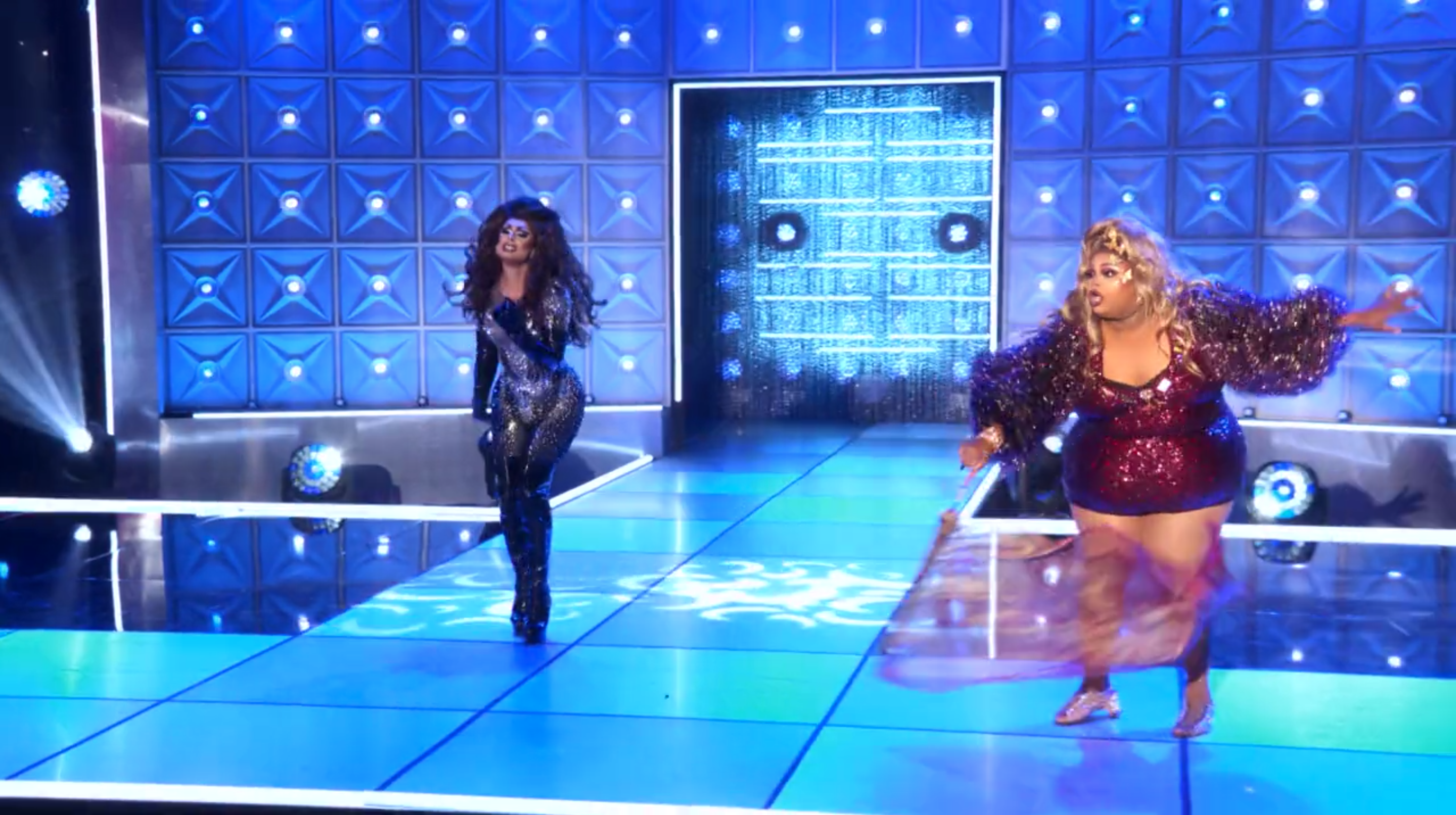 Silky and Scarlet doing battle and looking fierce.